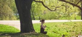 Meditazione Evolutiva
