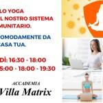 Corsi Yoga on-line zoom