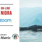 CORSO ANNUALE ONLINE DI YOGA NIDRA 2020-2021