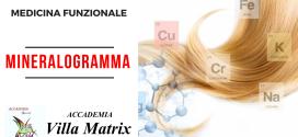 Mineralogramma a Roma. Analisi Minerale Tessutale del Capello per la salute